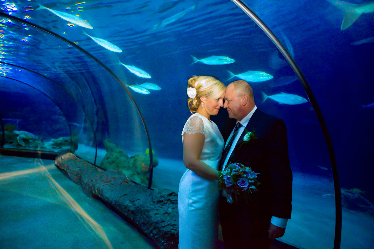Trouwreportage bruidspaar Oceanium Blijdorp